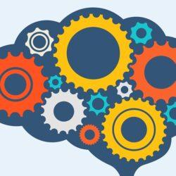 Bilişsel Gelişim Kuramları Hangileridir?